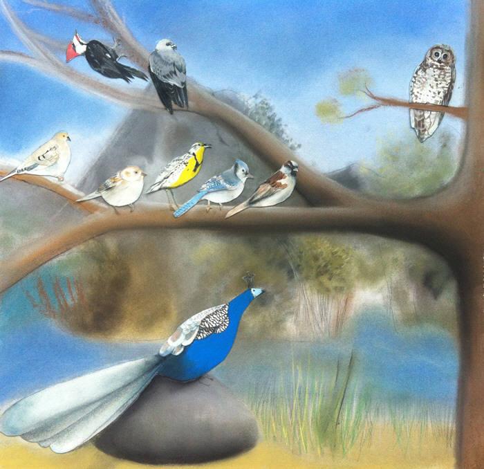 tamara-eugenemeets8birds