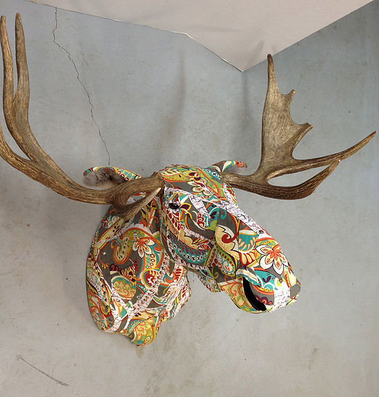 taxidermied-moose