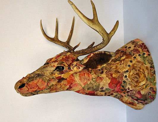 taxidermied-whitetaildeer