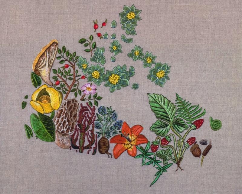 Dauphinee-Plants