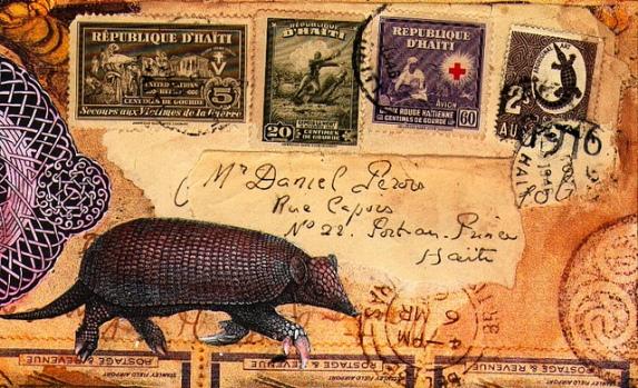 mail art - pinterest armadillo