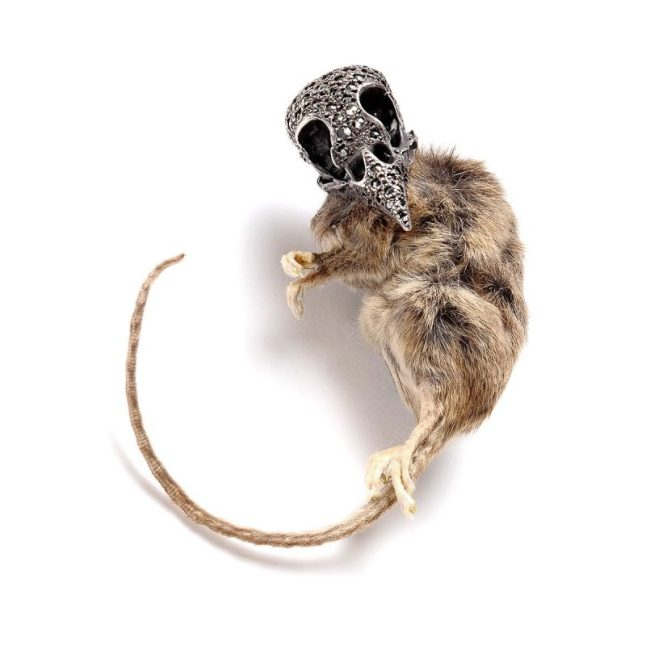 Sparrow Mouse Brooch: Taxidermy mouse, oxidised sterling silver, black diamonds, marcasite. http://www.juliadeville.com/bespoke/details/7329905475/sparrow-mouse-brooch/